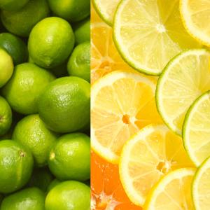 Lime & citrus slices